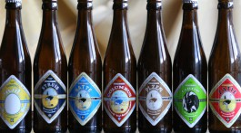 7 beer bottles of different beers of Brouwerij 't IJ