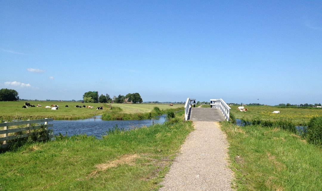 Little bridge in open fields