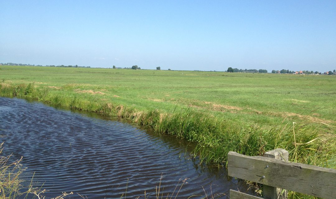 A wide stream of water in front of open farm land