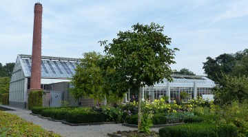 The garden and the greenhouse