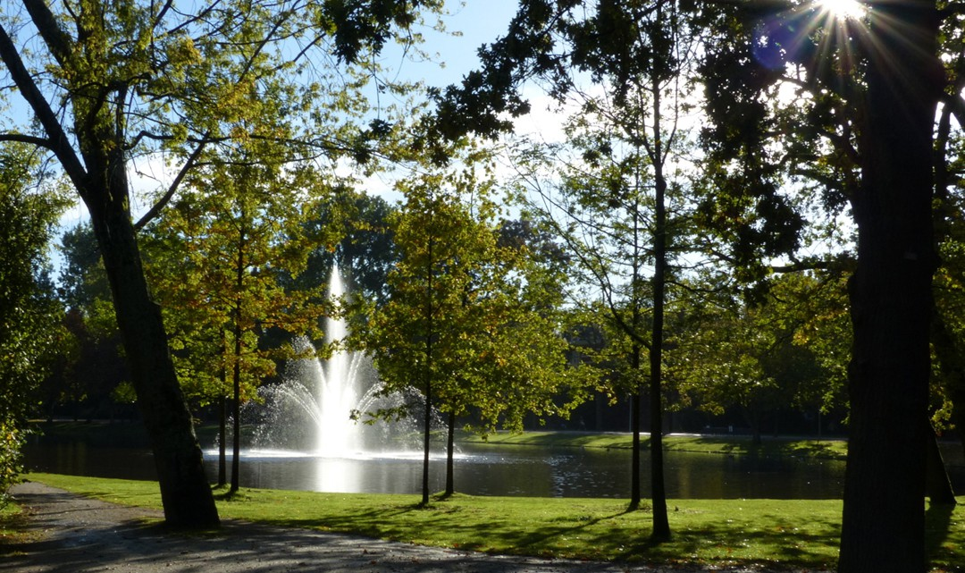 Sunshine on the fountain in the middle of the pond as seen through trees