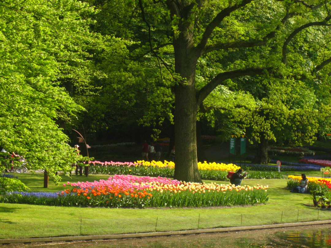 keukenhof how to get there from amsterdam