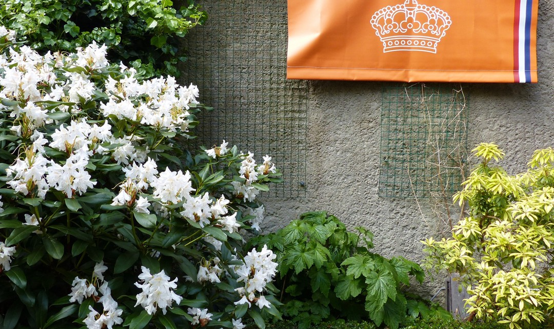 An orange banner with a white Dutch crown hangs on a garden wall