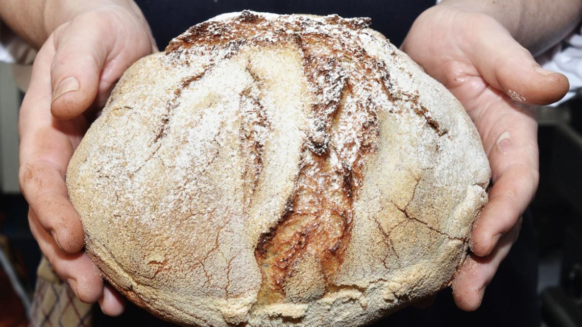 Pianeta Terra's homemade bread