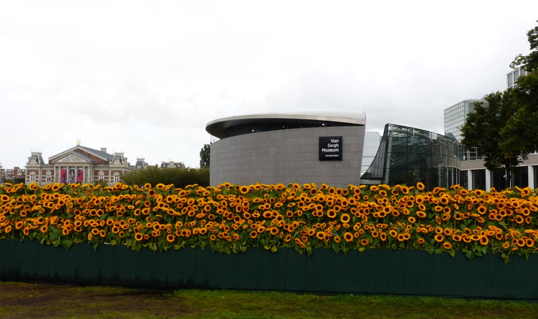 Sunflowers the new extention and the concertgebouw