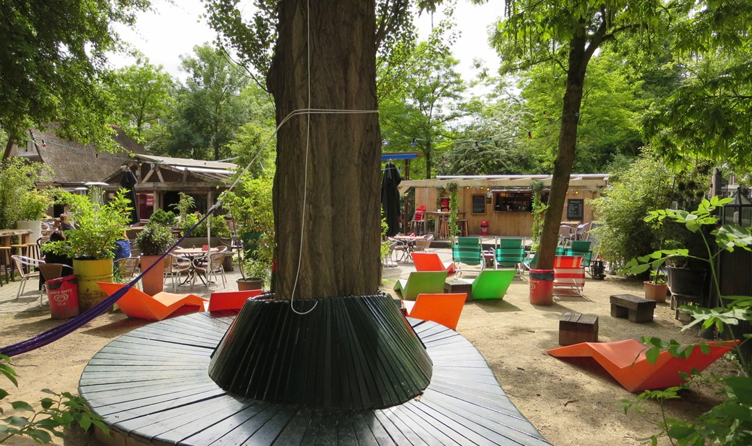 A bench constructed around a tree and lounge chairs in the background