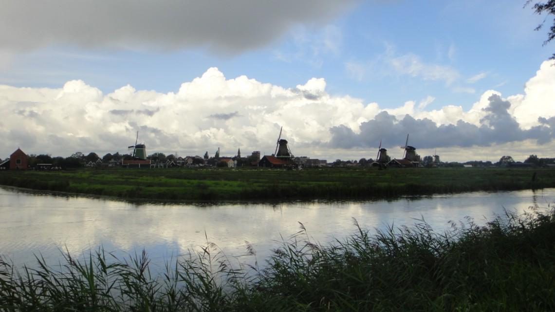 A view over reed and water towards the village and windmills on the other side